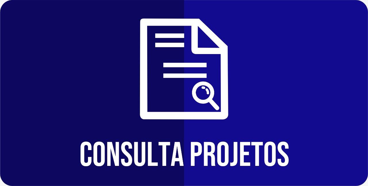 Consulta Projetos