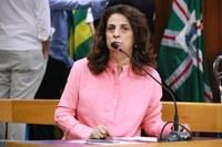 Aprovada criação de Campanha Permanente de Conscientização do Enfrentamento ao Assédio e à Violência Sexual em Goiânia