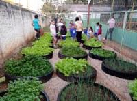 Aprovado projeto que implanta hortas nas escolas