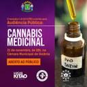 Lucas Kitão realiza nesta quinta-feira audiência pública sobre uso da cannabis medicinal