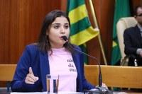 Sabrina quer proibir uso de água tratada para limpeza de calçadas e carros